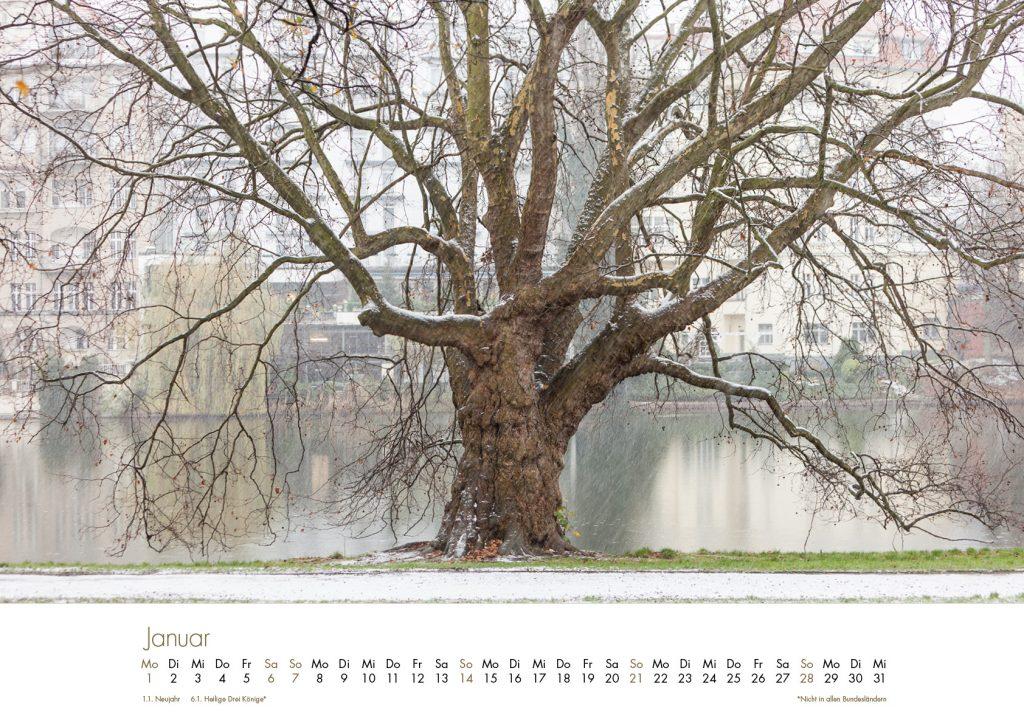Der Lietzensee-Kalender 2018 – Januar