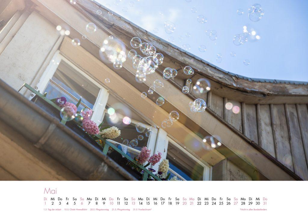 Der Lietzensee-Kalender 2018 – Mai