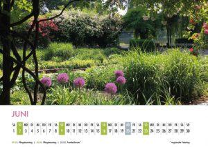 Der Lietzensee-Kalender 2019 – Juni